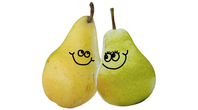 We make a great pear!